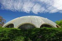 shine dome