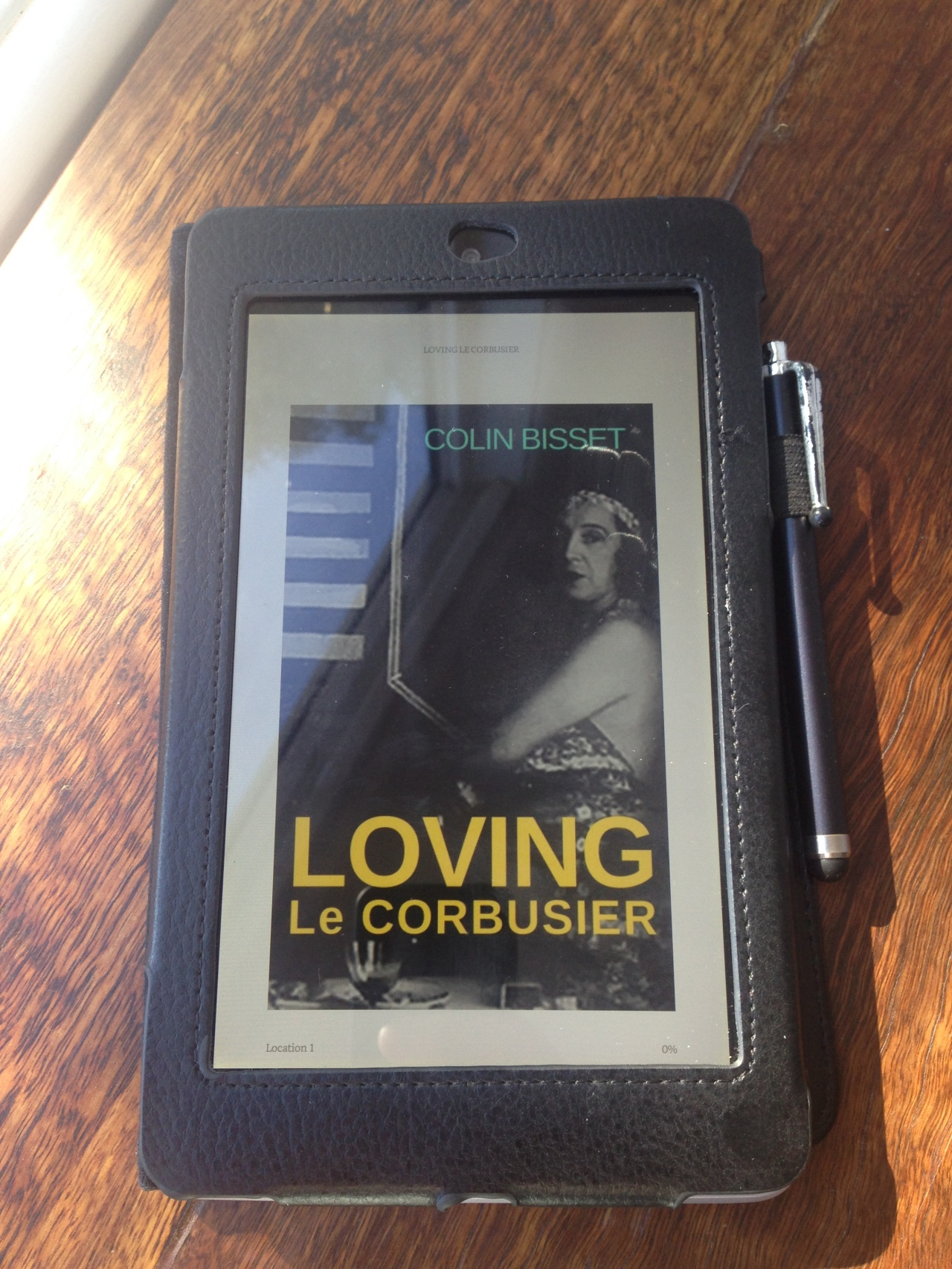 My new novel: Loving Le Corbusier